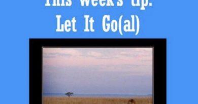 Wellfie Wednesday: Let It Go(al)