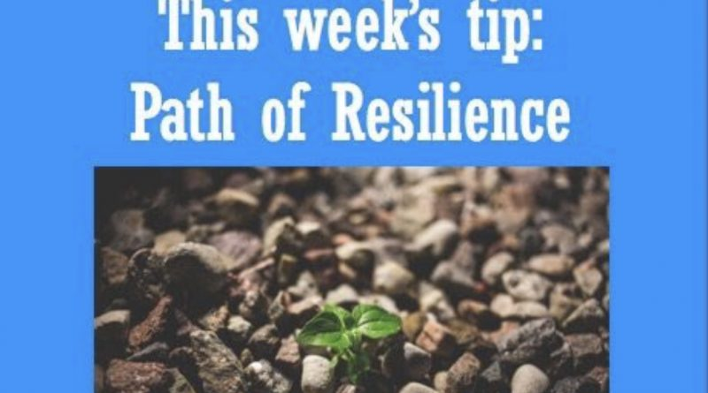 Wellfie Wednesday: The Path of Resiliency