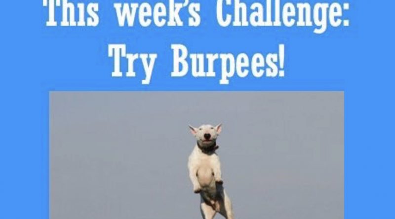 Wellfie Wednesday Blog Post: Try Burpees